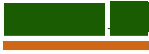 iintech defence logo