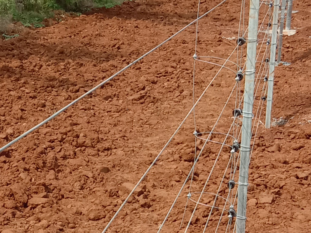 solar electric fence kerala